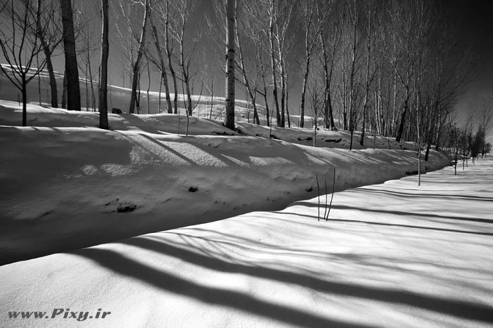 http://dl-dj.persiangig.com/Pic-Web/Iran-Ziba/Barf/7770182-lg.jpg